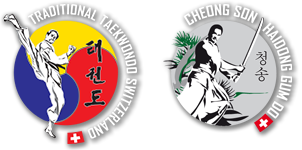 Traditional Taekwondo Switzerland / Cheong Song Haidong Gumdo